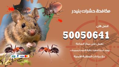 مكافحة حشرات بنيدر