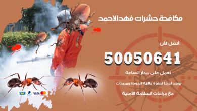 مكافحة حشرات فهد الاحمد